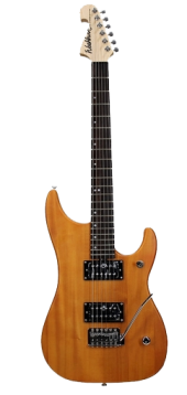 Washburn N1 NM